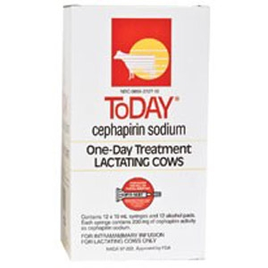 ToDay®  Lactating Cow Mastitis Treatment
