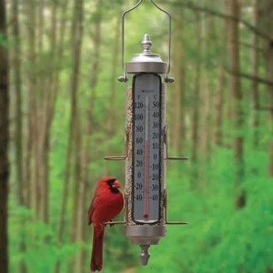 Conant Bird Feeder/Thermometer