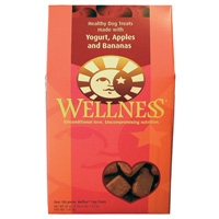 Wellness WellBars Fruit & Yogurt 4/50oz Case