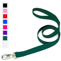 "Coastal Style 904 1"" x 4' Heavy Weight Nylon Web Lead Red"