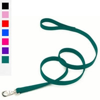"Coastal Style 2906 1"" x 6' Double Ply Nylon Training Lead Red"