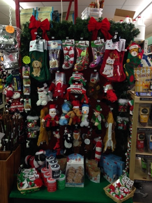 Pet Stockings & Stocking Stuffers