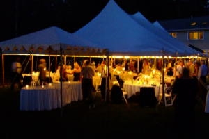 Tent Lighting, Mini Lights 50'