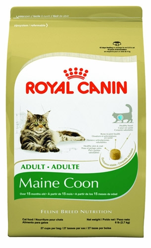 Royal Canin Maine Coon 4/6#