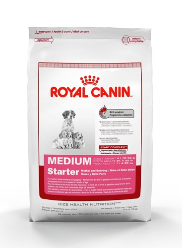 royal canin chat strilis elegant urinary royal canin chat. Black Bedroom Furniture Sets. Home Design Ideas