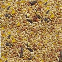 Essential Wild Bird Food 50 lb.