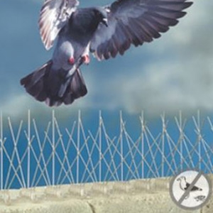 Bird-B-Gone® Stainless Steel Bird Control Spikes