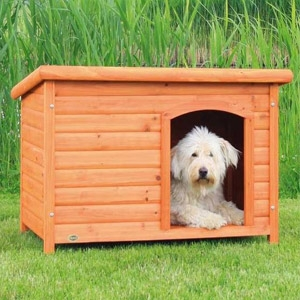 Trixie: Large Flat Roof Dog House