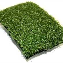 Flooring: Astroturf carpet