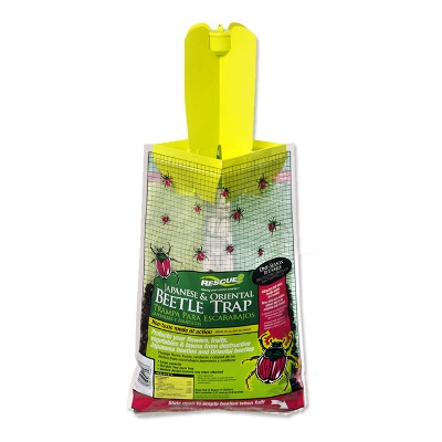 Japanese & Oriental Beetle Trap by Rescue