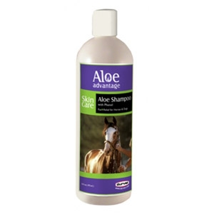 Aloe Advantage Aloe Shampoo with Phenol