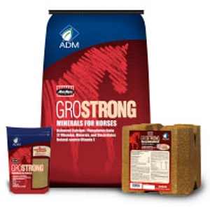MoorMan's® GROSTRONG® Minerals for Horses