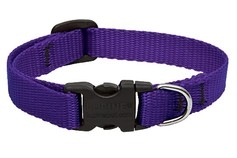 Small Dog Traditional Solids Adjustable Collar