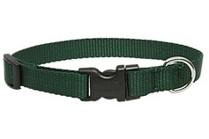 Medium Dog Traditional Solids Adjustable Collar