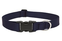 Large Dog Traditional Solids Adjustable Collar