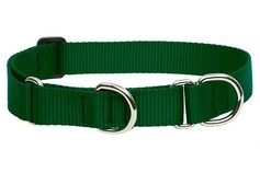 Large Dog Traditional Solids Combo Collar