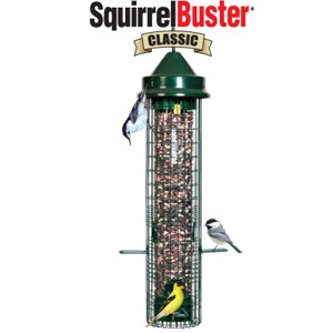 Brome Bird Care Squirrel Buster Classic