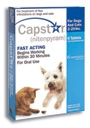 Capstar Dog/Cat 1-25# 6Tabs