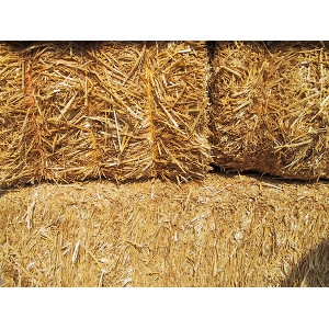 Hay Bales - for Feed & Bedding