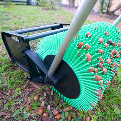 how to stop a sweet gum tree from producing balls