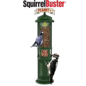Brome Squirrel Buster Peanut + Bird Feeder