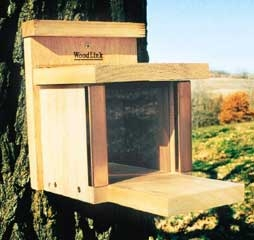 Squirrel Munch Box Feeder