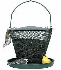 Green No/no Bird Feeder With Tray