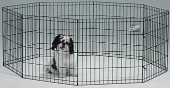 Black Exercise Pen With Door 24in