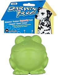 Darwin The Frog Dog Toy Large