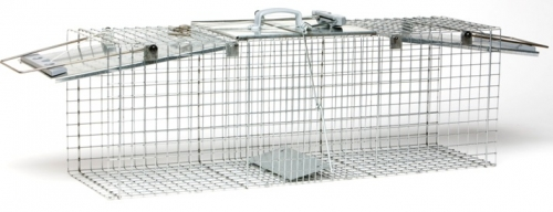 Havahart Ez Set Cage Trap For Raccoons & Groundhogs