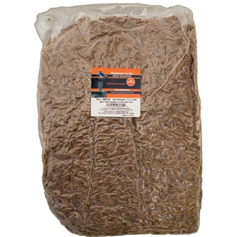 Unipet Mealworm To Go Dried Wild Bird Food High Protein 11.02 Lb