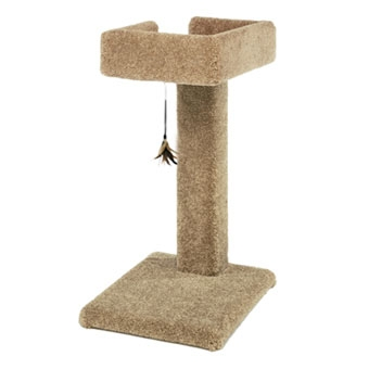 Ware Kitty Cactus Carpeted Scratching Post With Toy 24in
