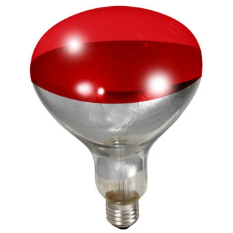 Miller Mfg Heat Lamp Bulb Red 250 Watt
