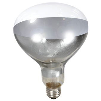 Miller Mfg Heat Lamp Bulb Clear 250 Watt