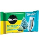 Miracle Gro Evergreen Spikes
