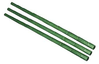 Green Bamboo 4ft