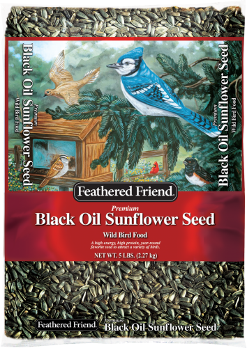 Feathered Friend® Black Oil Sunflower (5#)