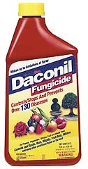 Daconil Fungicide Concentrate 16oz