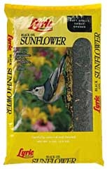 Lyric Black Oil Sunflower 25lb