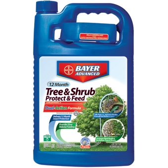 Bayer Tree & Shrub Protect & Feed Concentrate 2gal