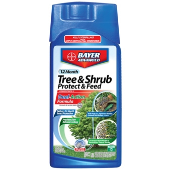 Bayer Tree & Shrub Protect & Feed Concentrate 1qt