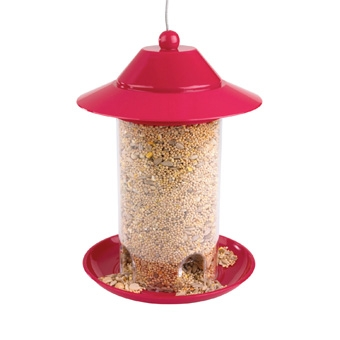 Belle Fleur First Steps Bird Feeder