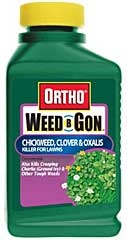 Ortho Weed-b-gon Chickweed And Clover Killer 16oz