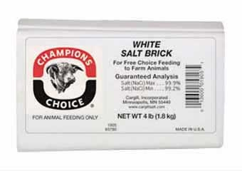 Champions Choice White Salt Brick 4lb