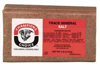 Champions Choice Trace Mineral Brick 4lb
