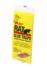 Rat Glue Tray 2pk