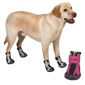 PetEdge® Guardian Gear® Nordic Trek Dog Boots