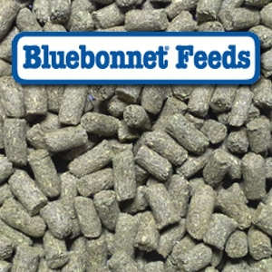 Bluebonnet® Intensify Ex-Factor 14-8 Pelleted Horse Feed