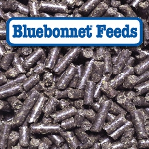 Bluebonnet® Intensify Omega Force Pelleted Horse Feed