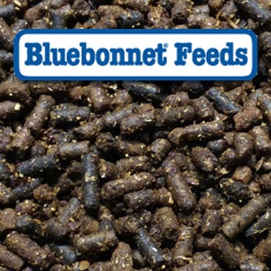 Bluebonnet® Intensify® Senior Therapy Pelleted Horse Feed